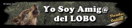yosoyamigodellobo